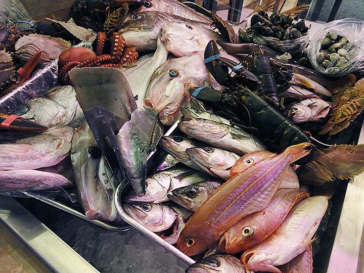 CONA柳橋中央市場の魚